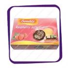 Sondey - Raspberry Jaffa Cakes - 300gr